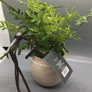 Threshold Accents - Threshold Decorative Hanging Plant